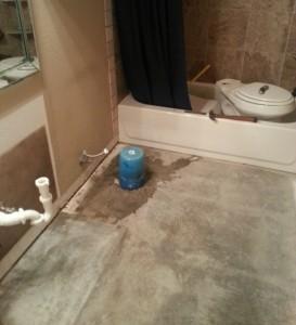 bathroomgutting